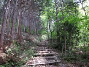 登山道開始