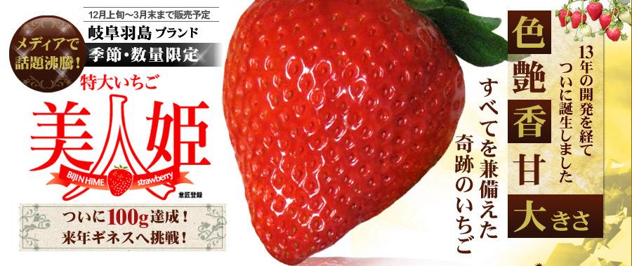 最高級イチゴ 美人姫 色・ツヤ・甘み・形・大きさの5拍子を兼ね揃えた奇跡のイチゴ!
